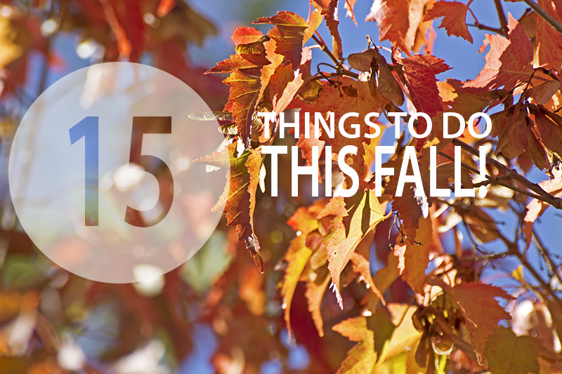 15 Things to do this fall