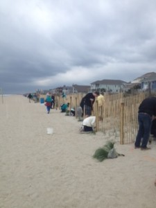 Wrightsville Beach Sea Oats project for RAD2016