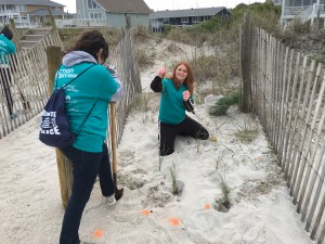 Wrightsville Beach Sea Oats project for RAD2016 IMG_3524